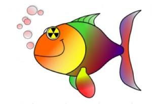 blog poisson