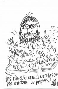 AG dessins d'Alain Guillemot cocottes 313042016