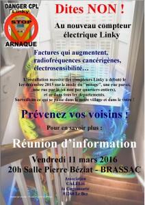 Blog Linky_Brassac_11032016